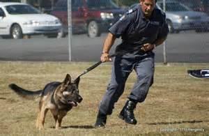 lawenforcementdogs2