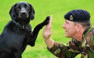 lawenforcementdogs3